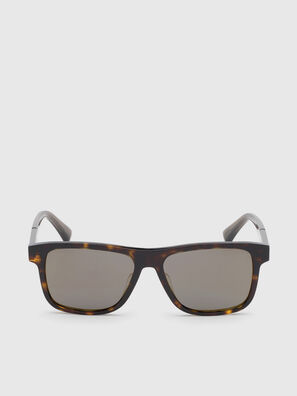 DL0279, Brown - Sunglasses