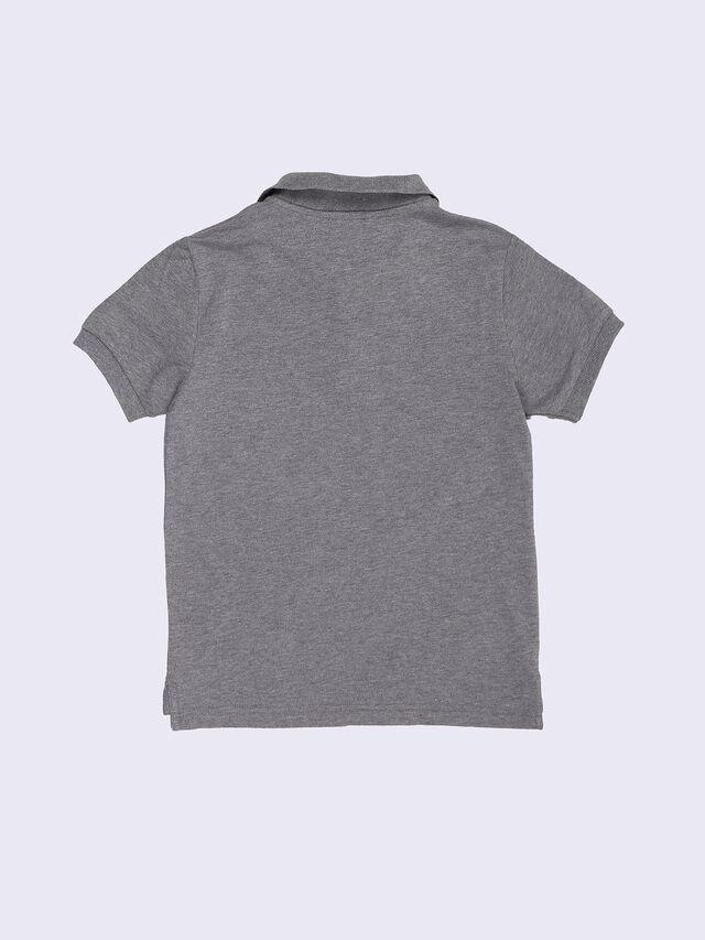 TAPIR, Grey